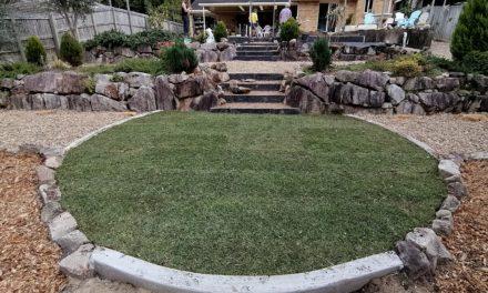 The House Has Grass Again